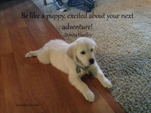 be like a puppy